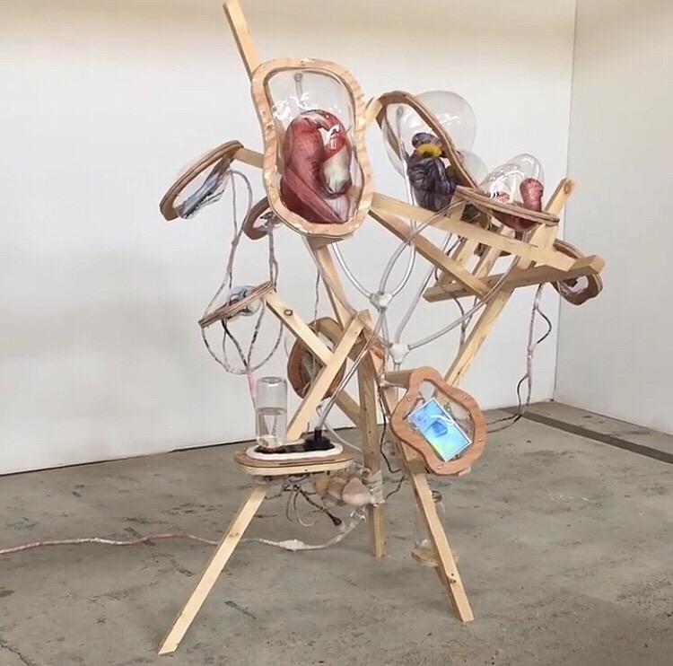 Kate Casanova - mushroom sculpture