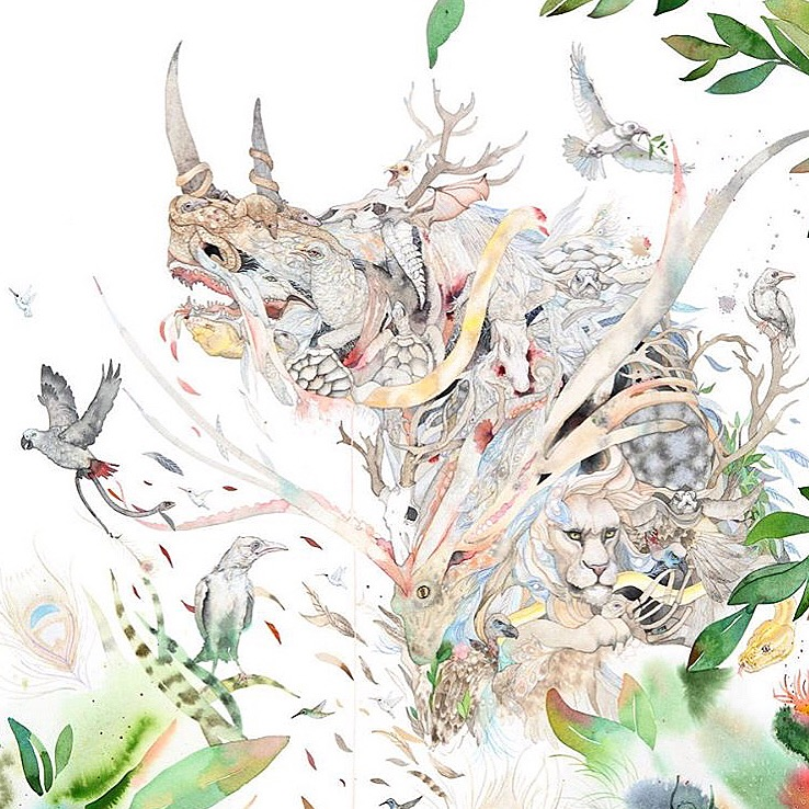 Laura Ballnet - Northern White Rhino