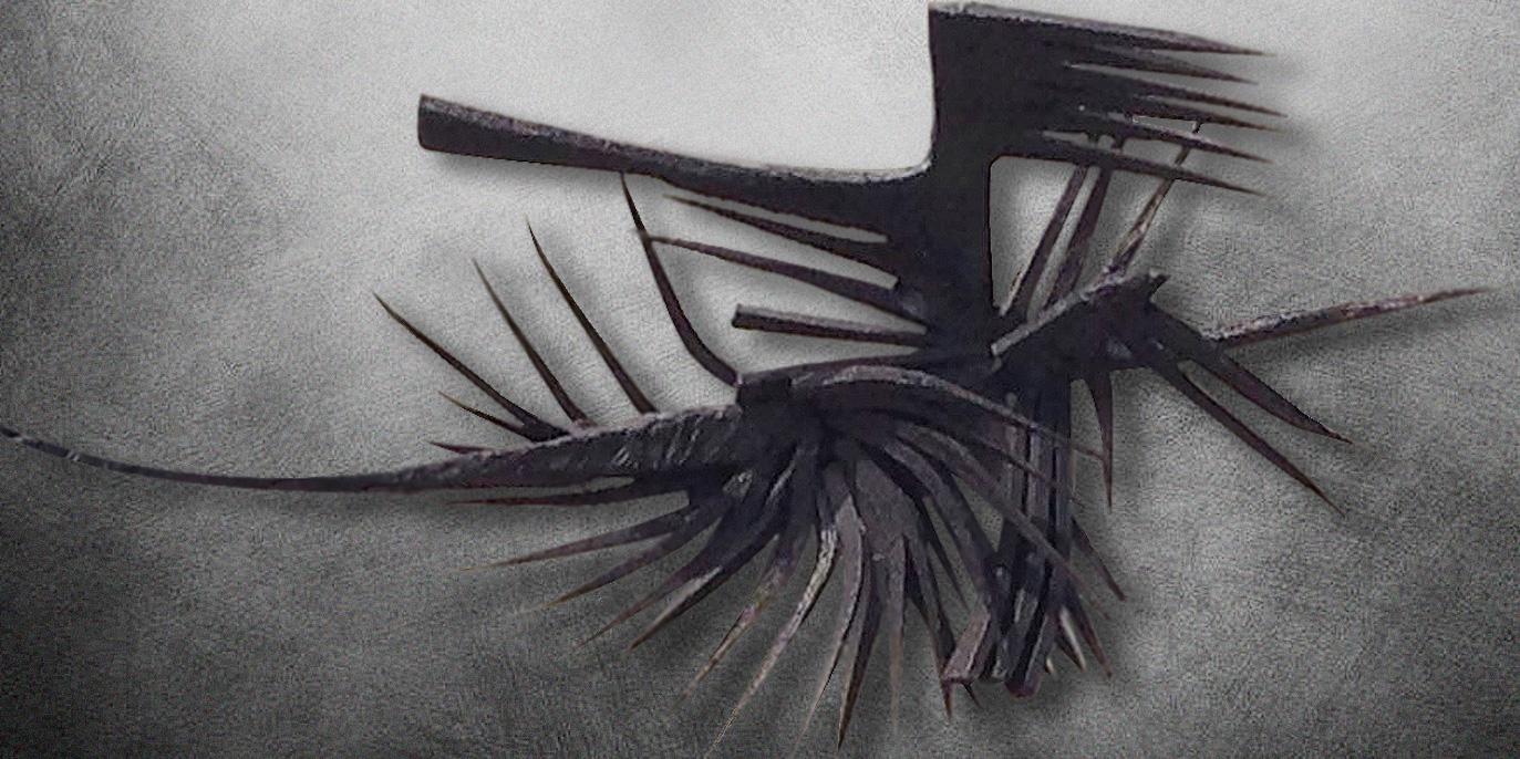 Kuzgun Acar, Kuşlar. Fotoğraf: Kültür Bilincini Gelşitirme Vakfı
