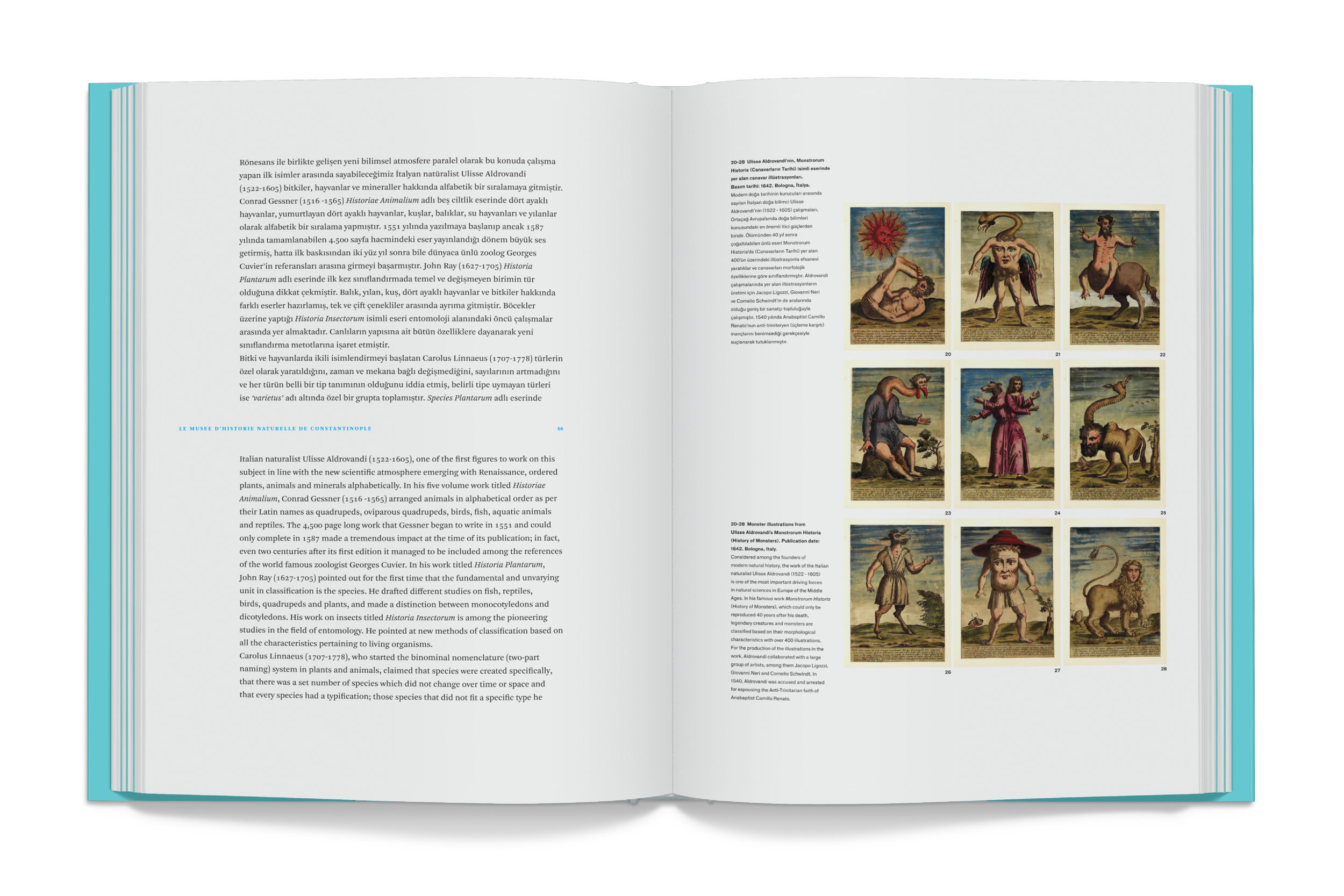Tayfun Serttas Kitap 1..jpg