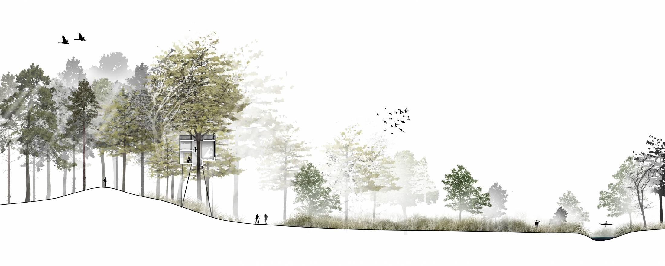 Treetop-Hotel_Denmark_lovtag_Architect-Sigurd-Larsen-axo-forest-Landscape-long-section-1100x440@2x.jpg