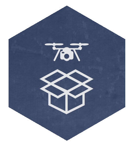 ICARUS Flight Training - learn to fly your new drone — Fly