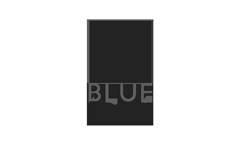 blue giraffe imaging.png