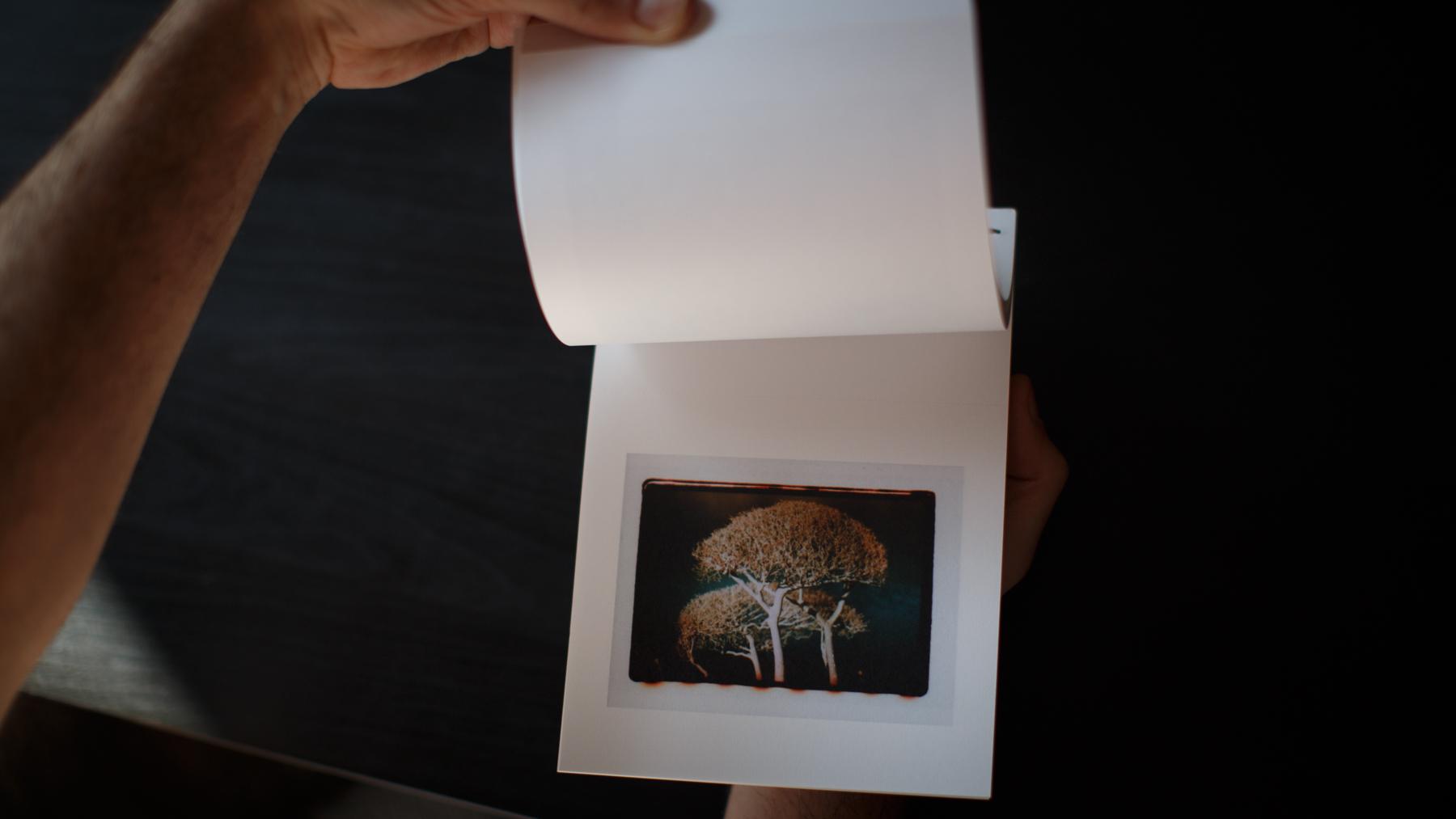 livro_ponte_dourada_sobre_rio_noturno-18.jpg