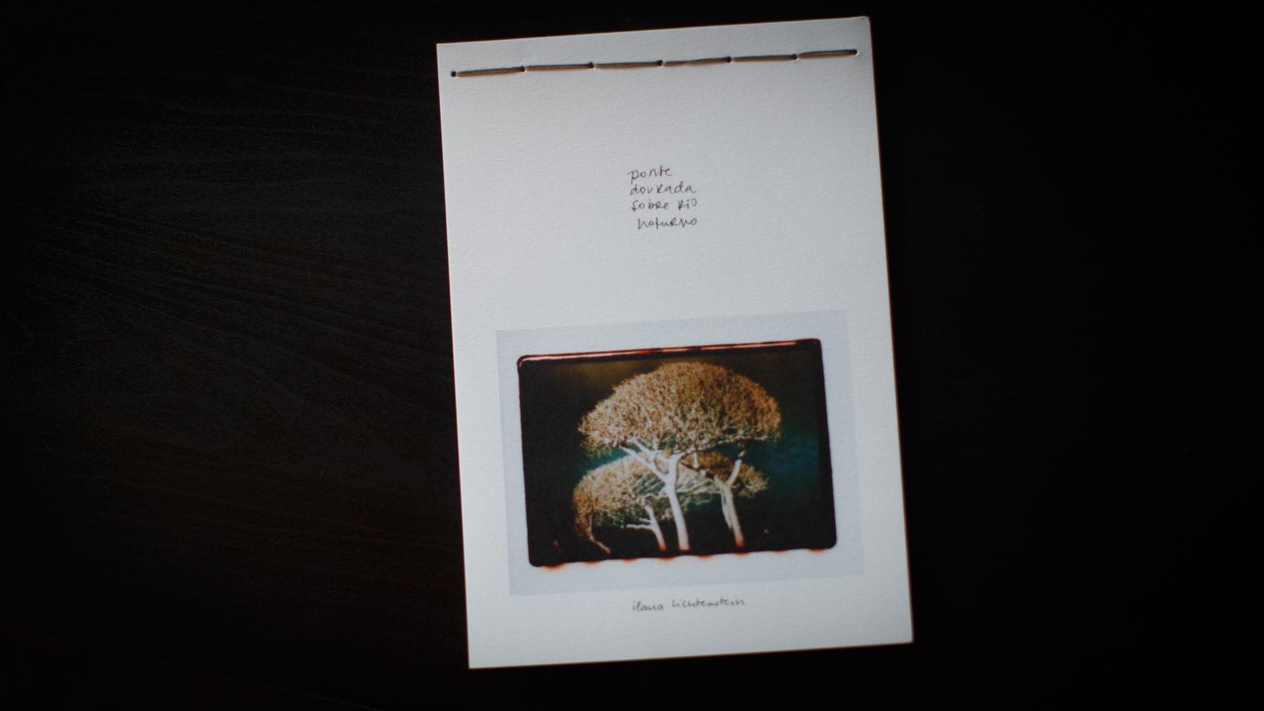 livro_ponte_dourada_sobre_rio_noturno-7.jpg