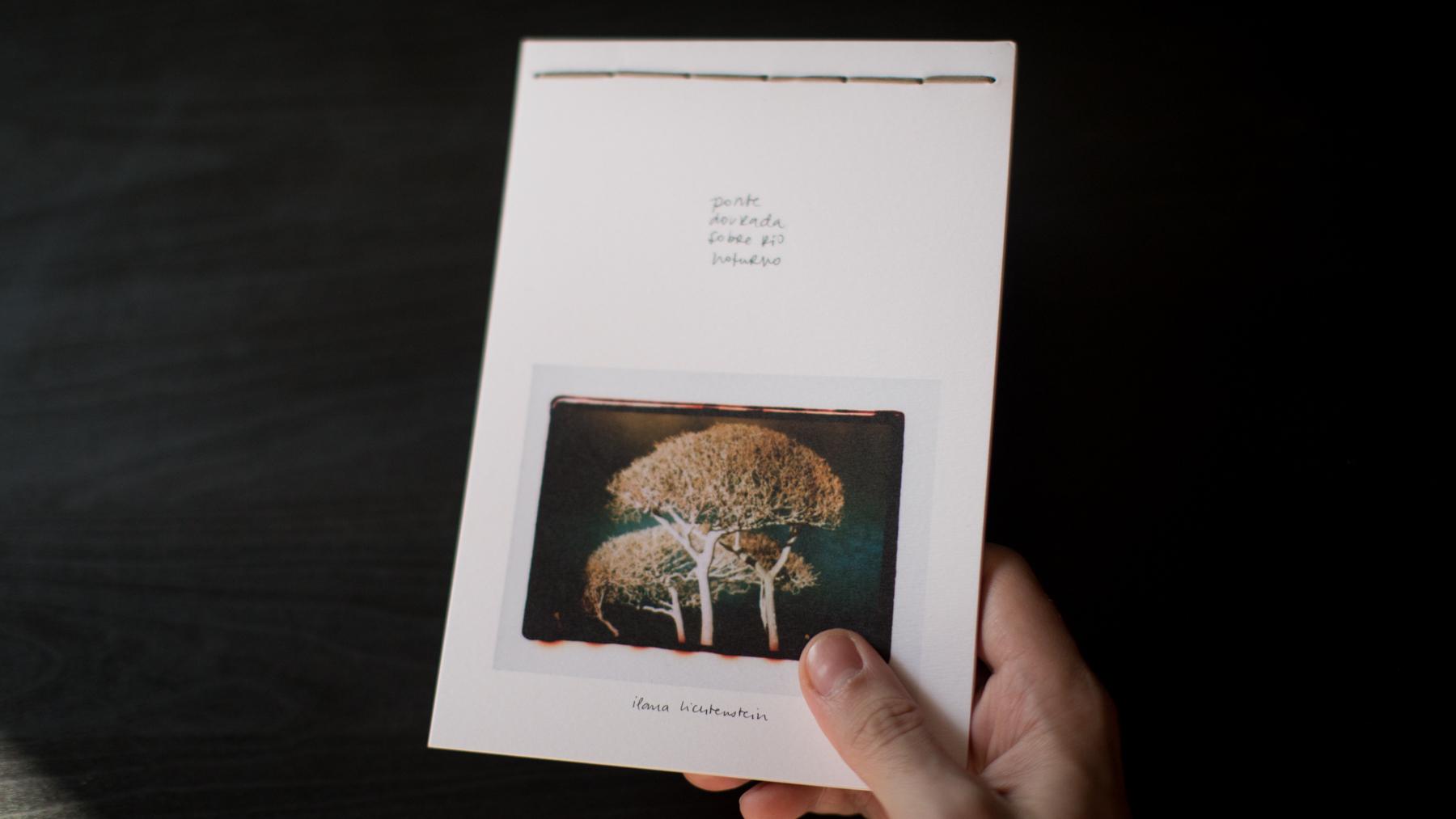 livro_ponte_dourada_sobre_rio_noturno.jpg