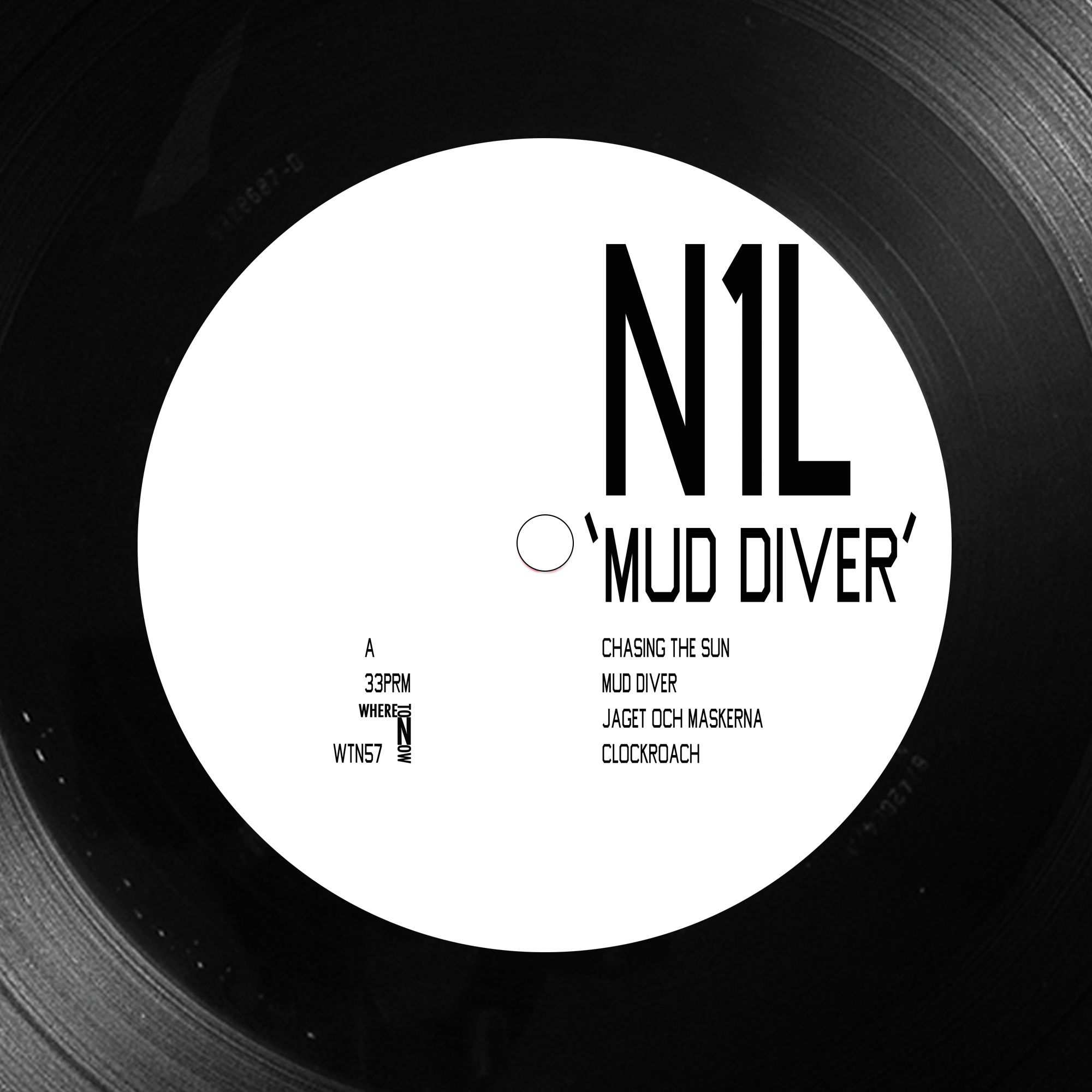 N1L - Mud Diver  7th April 2017  Where To Now?
