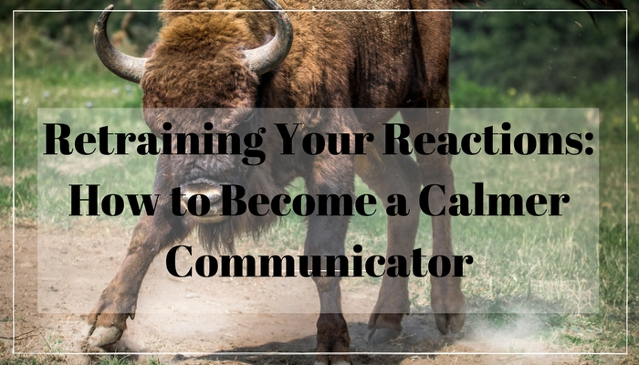 calmcommunicator.jpg
