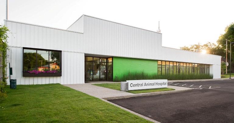 central animal hospital2015-004.jpg