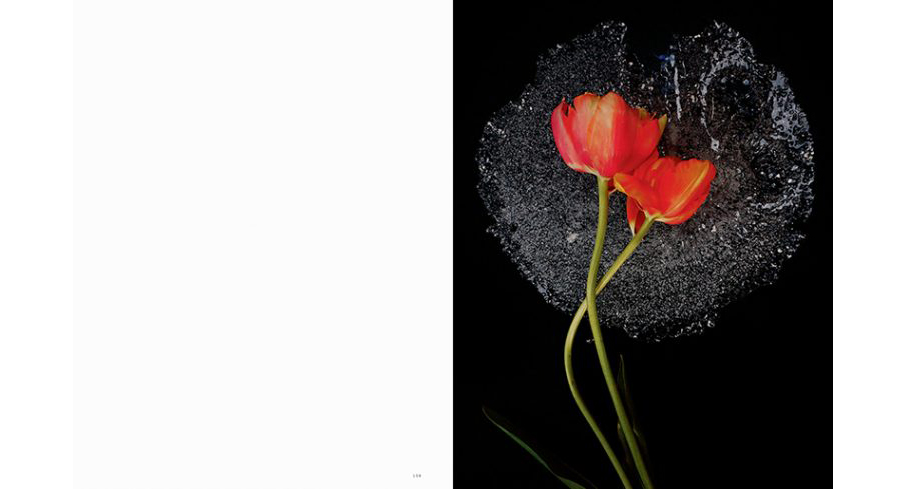 Jack-Davison-for-Pleasure-Garden-No.1-SS-2017-3-760x489.jpeg