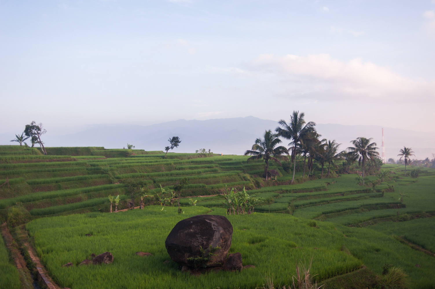 20120726_KEVINMICHAELBRIGGS_indonesia_001-6.jpg
