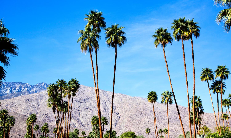 palm springs blue.jpg