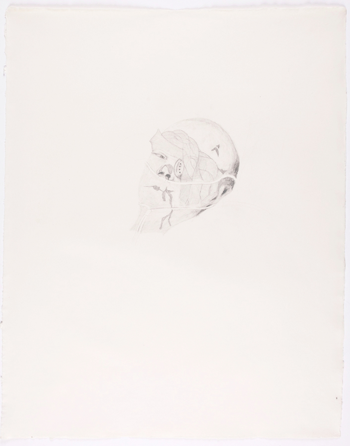 """Bandaged Soldier II. 2010. Pencil on Paper. 30"""" x 22"""""""