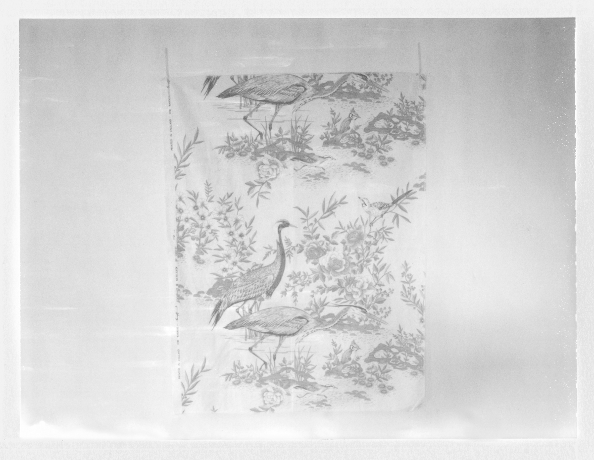 """Fabric Piece with Birds. 2015. Archival Pigment Print. 6"""" x 8"""""""