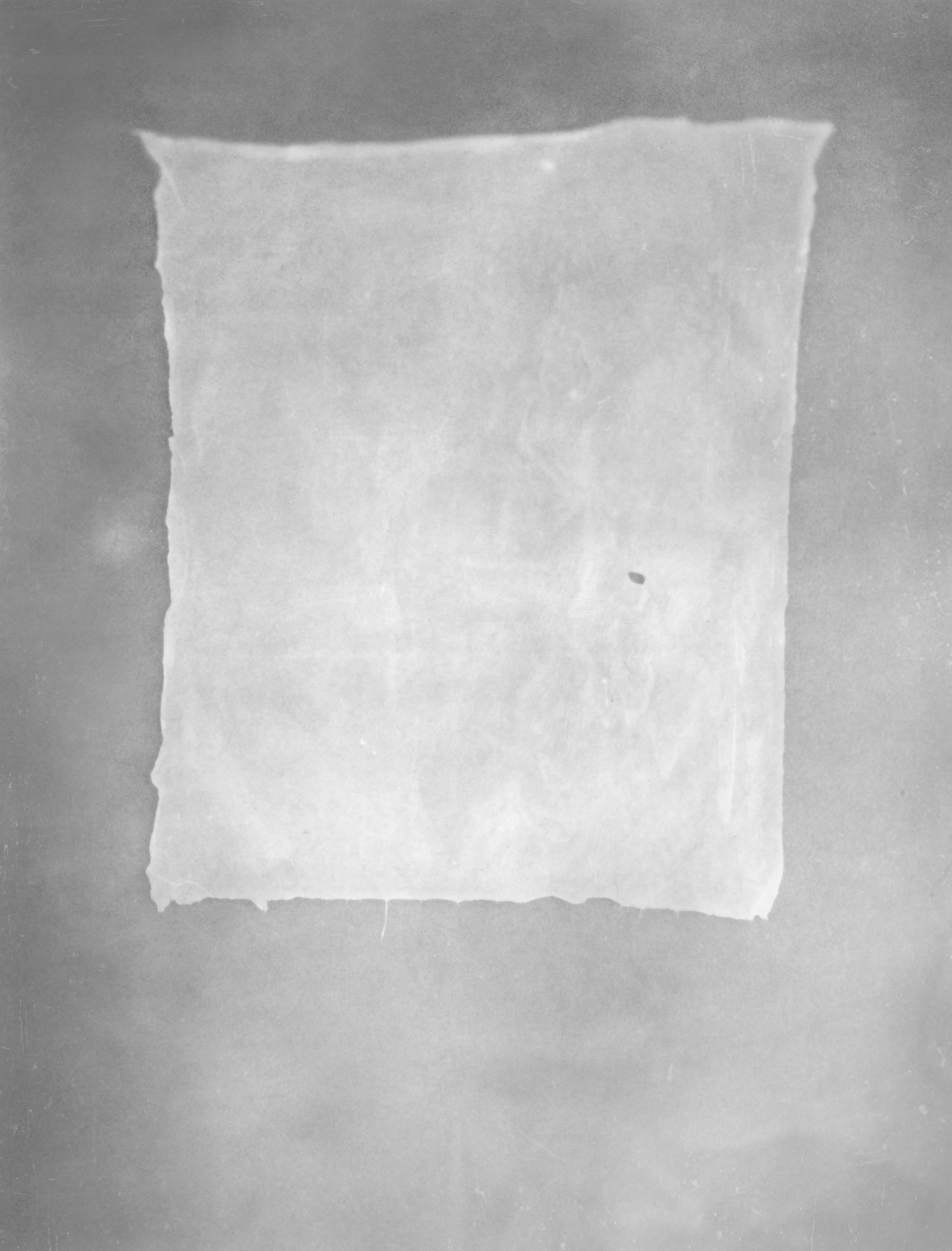 Pressed Hand-Made Paper