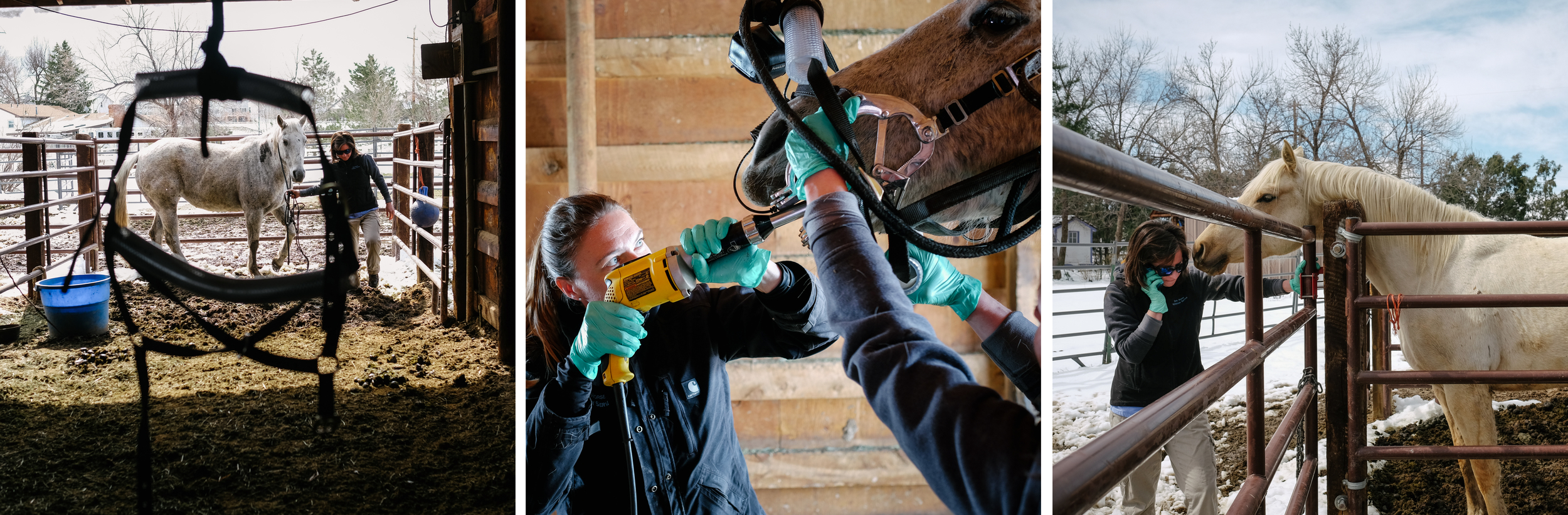 Dr. Hoke and her assistant, Courtney, work in a client's backyard horse shelter during an equine dental procedure.
