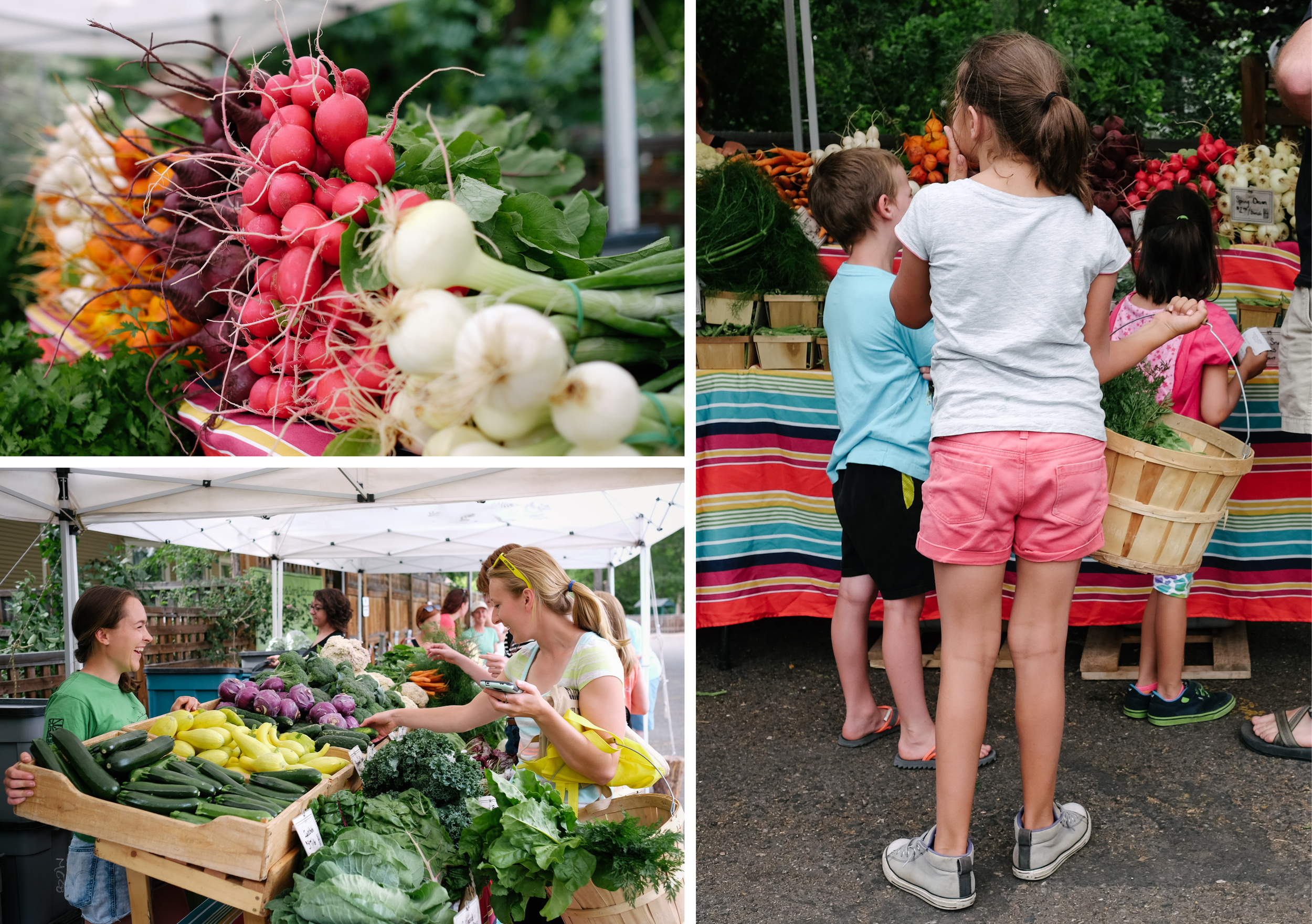A Wednesday evening farmer's market is equally popular with CSA members and the public.
