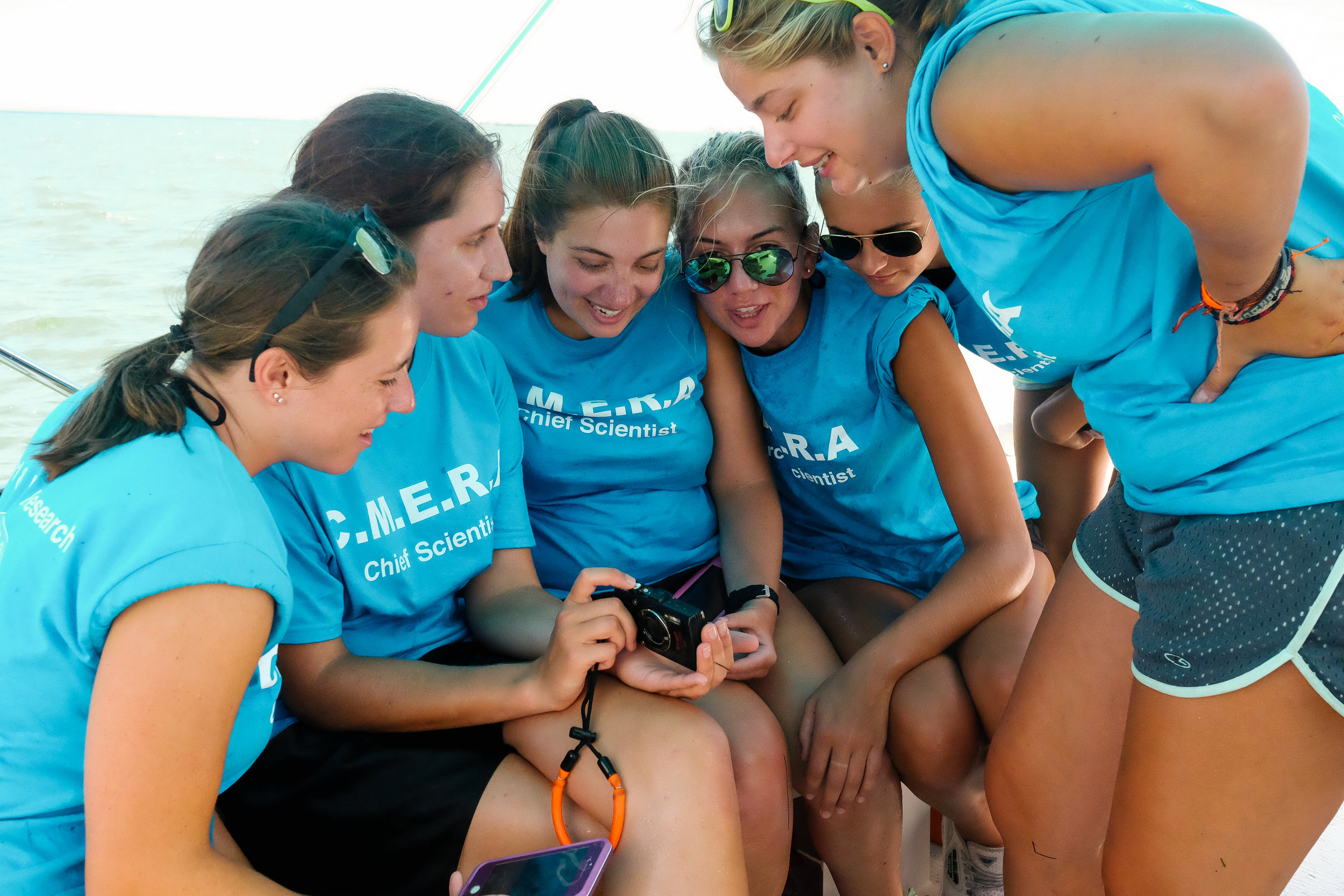 Six CMERA students share photographs of the stingray births with one another after releasing the animals into the ocean.