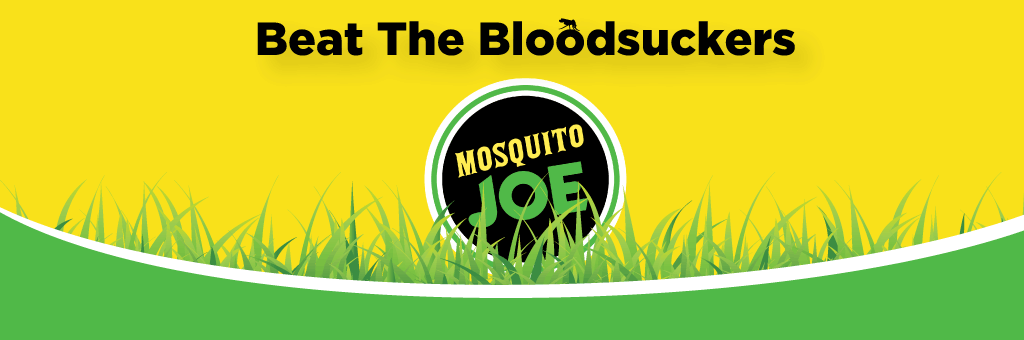 Mosquito Joe logo in grass with Beat the Bloodsuckers.png