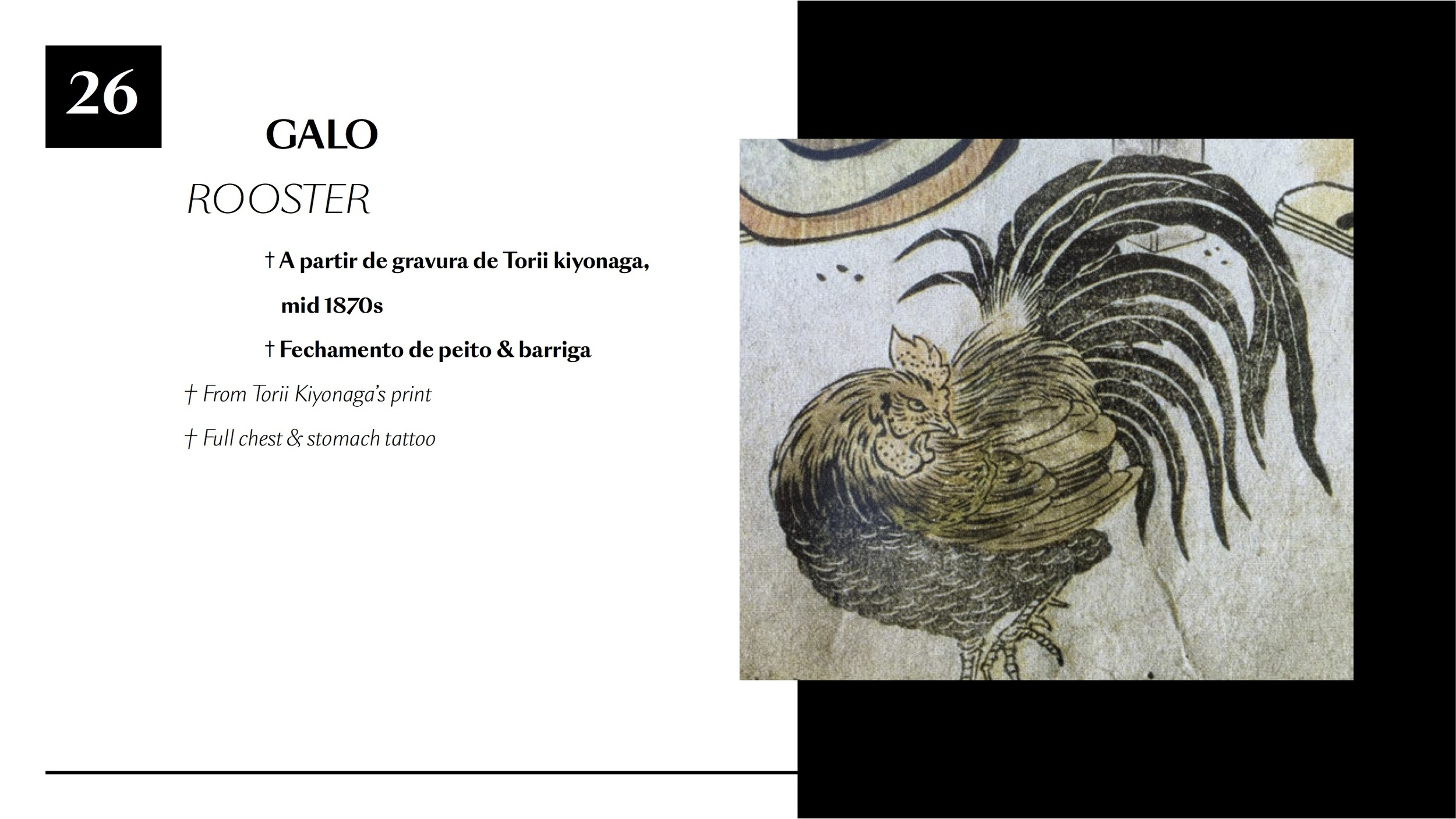 Frederico Rabelo 2015-2016 BR26.jpg