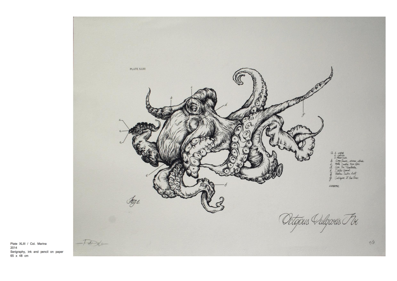Frederico Rabelo Catalogue15.jpg