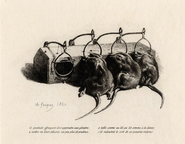 Mouses 2