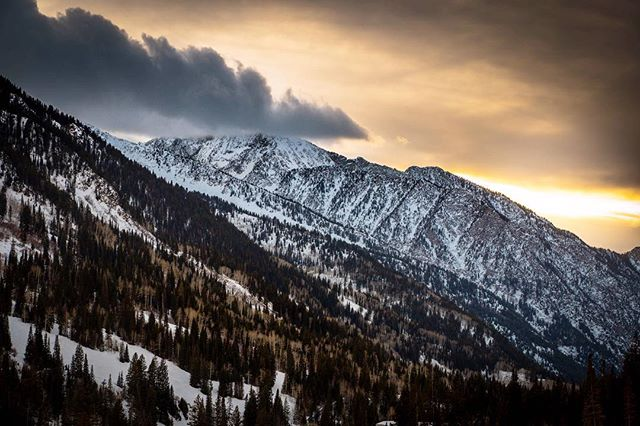 Took this in Utah last year but it might as well be San Diego because it's so dang cold right now! Am I right people?? Heater is set to 80 degrees! What is weather? #notsandiego #snowbird
