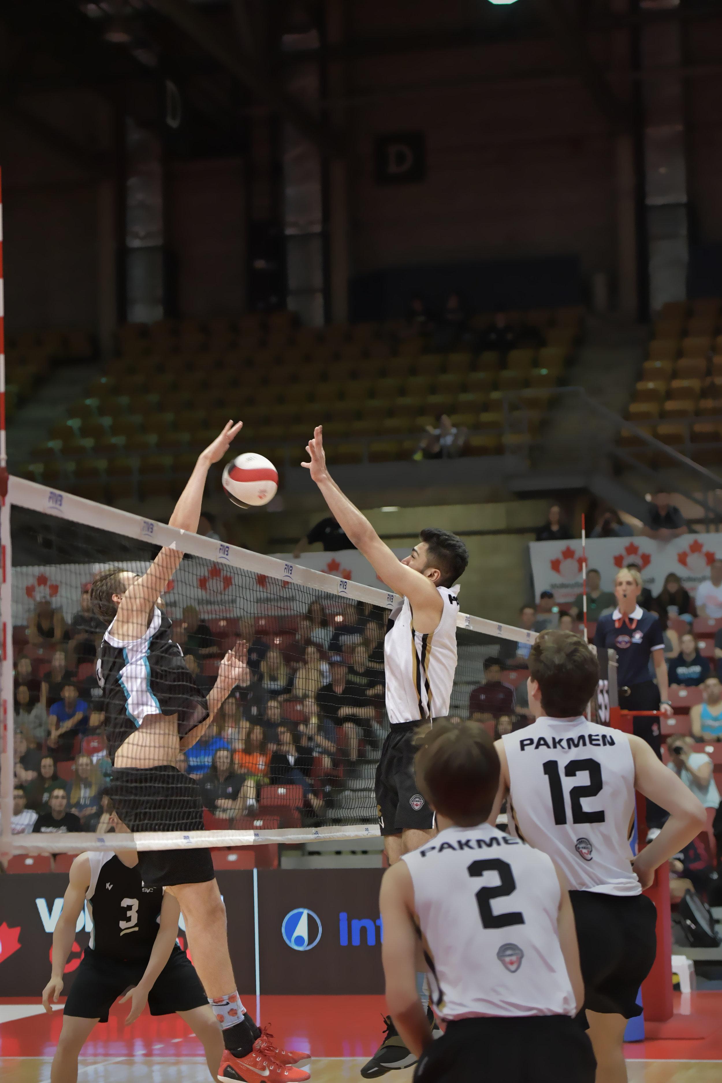 volleyballaction_4158.jpg