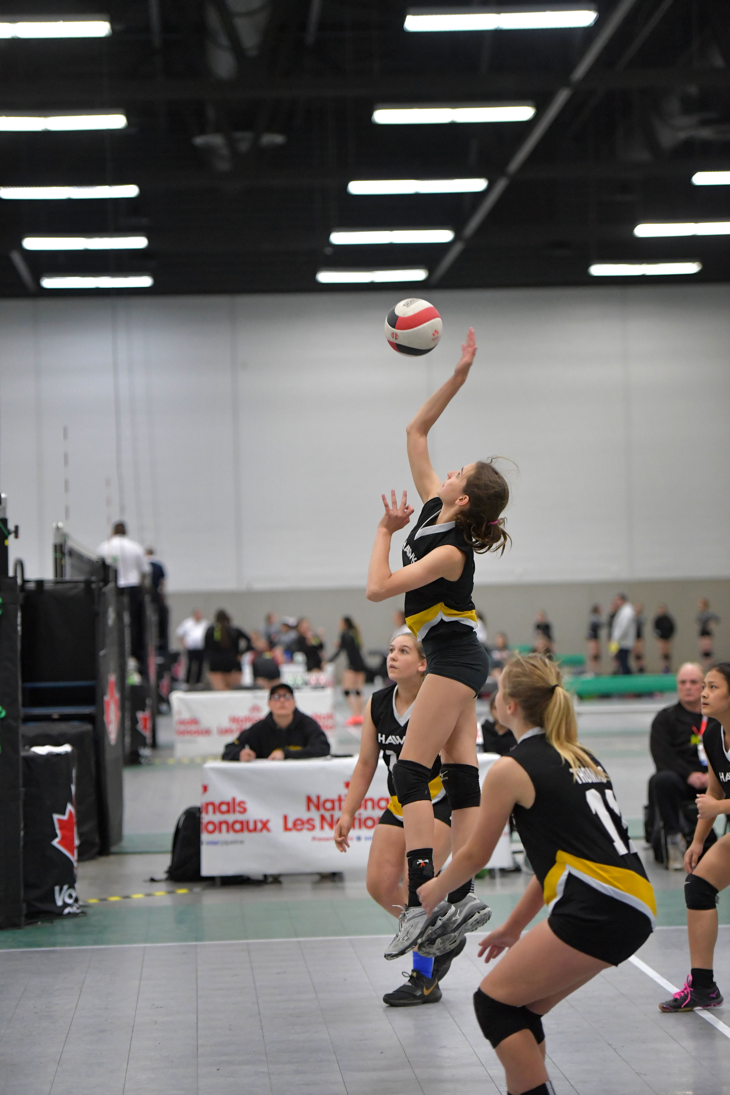volleyball action_5360.jpg