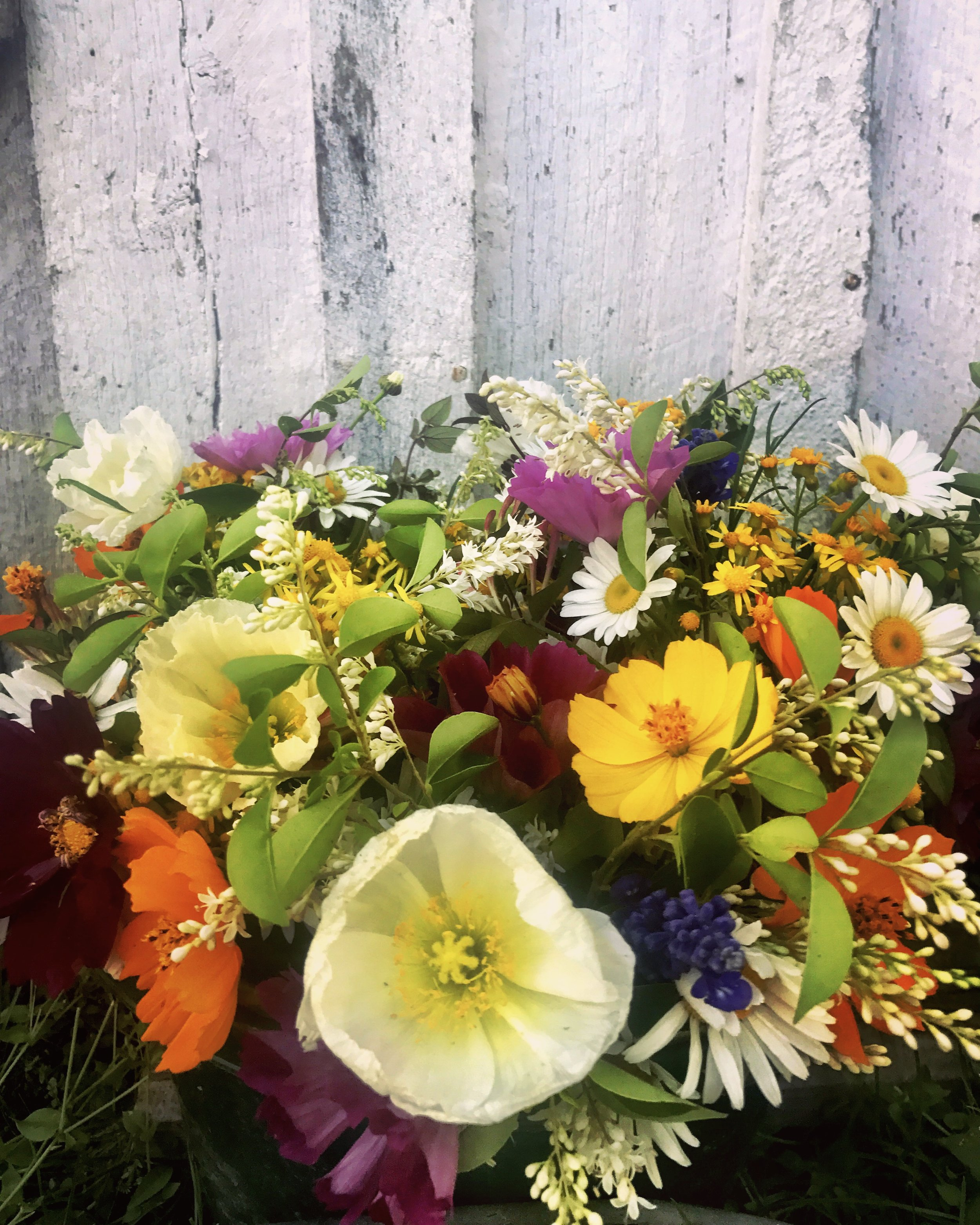 We have loads of flowers and love to make bouquets! Let us know when you need some flowers for your friends, loves, or yourself!