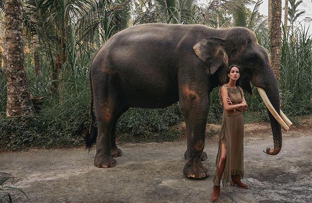 NEW cover shoot for SCMP shot in Bali 🐘🍃 . @melnikovakristina @balimodelagency #styling @hannahbeckstylist #hmua @floradickie_makeup @lovebalistarz shot at Mason park elephant sanctuary @elephantsbali @velweiss #bali #explorer #newwork #outnow #onlocation #fashion #photographer #carlaguler #canon
