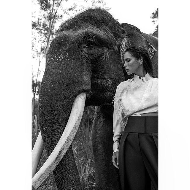 NEW cover shoot for SCMP 🐘🍃 . @melnikovakristina @balimodelagency #styling @hannahbeckstylist hmua @floradickie_makeup @lovebalistarz @velweiss #bali #explorer #newwork #outnow #onlocation #fashion #photographer #carlaguler #canon #nature #indonesia #shotonlocation #jungle