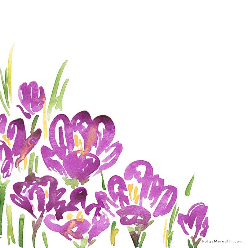 web_pattern_purplecrocus_161129.jpg