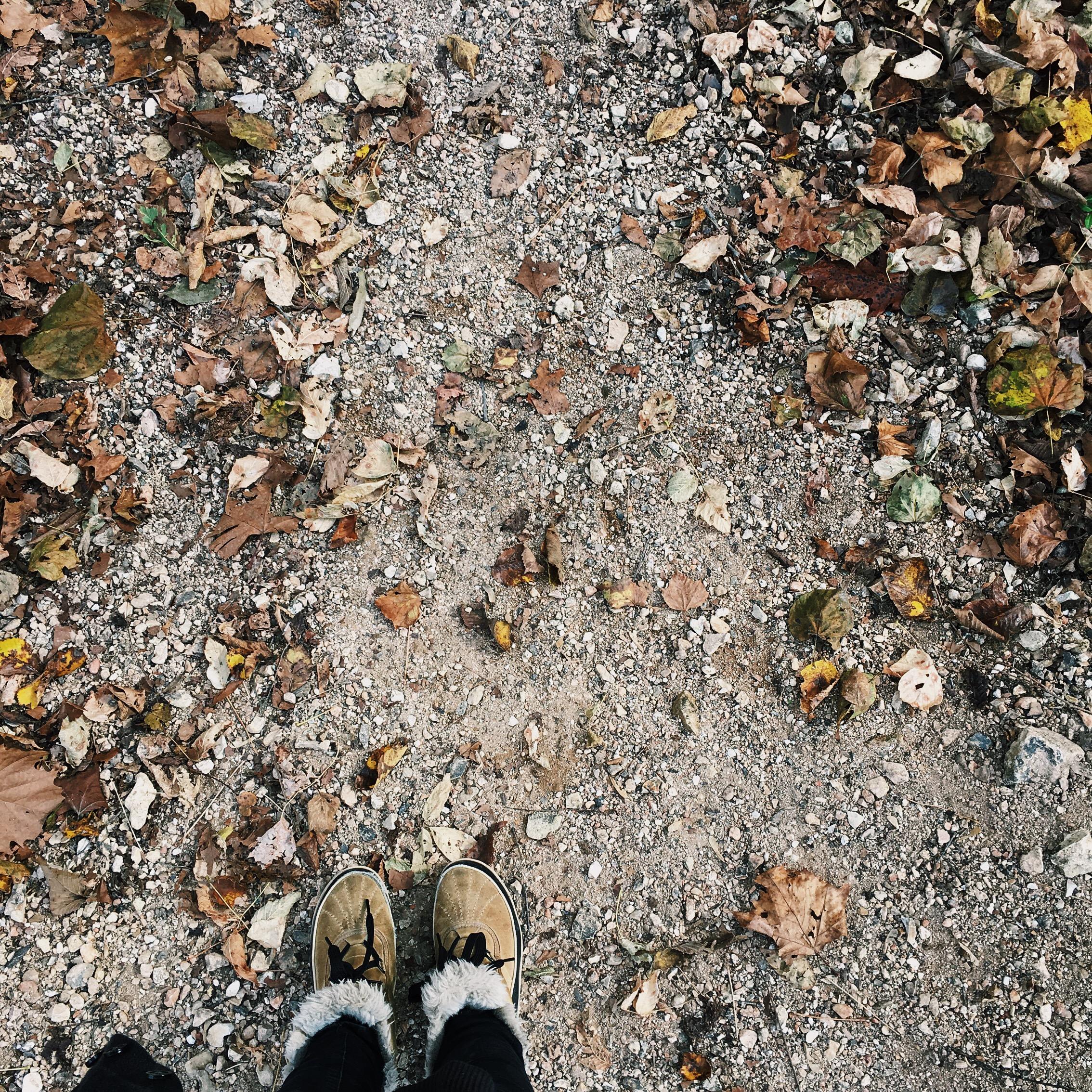hiking trails in bella vista arkansas