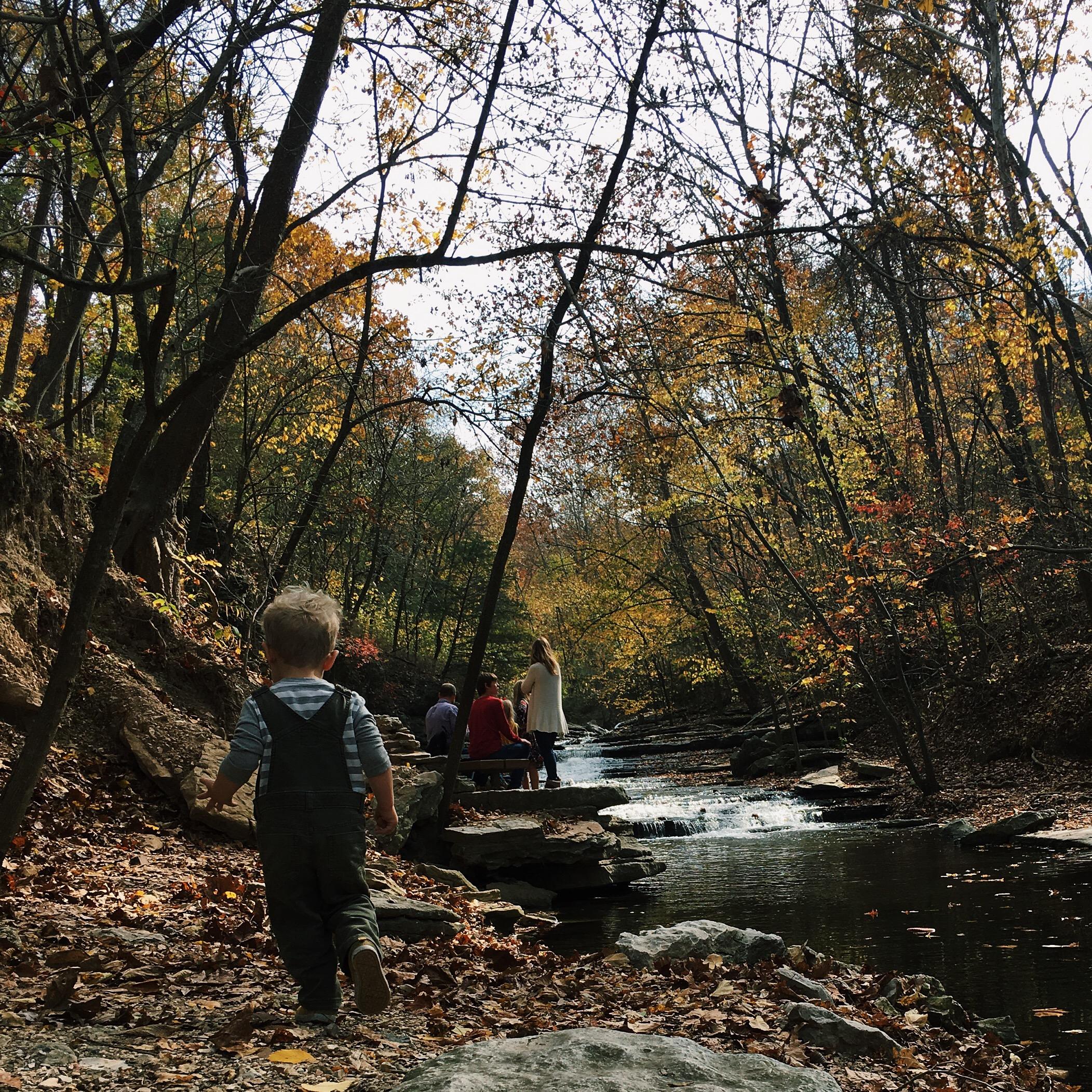 Tanyard creek northwest arkansas hiking trail family friendly