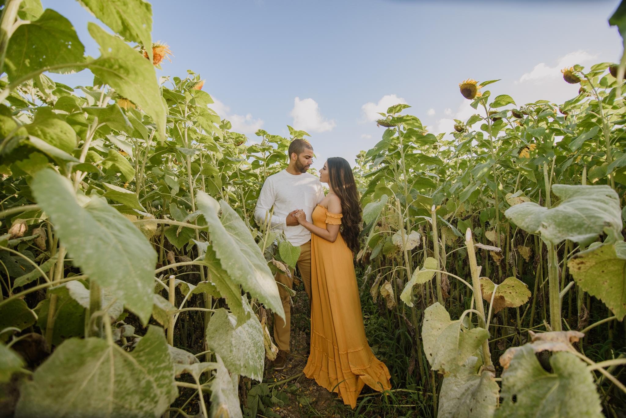 KAREN + JACOB ENGAGEMENT:  MIAMI, FLorida