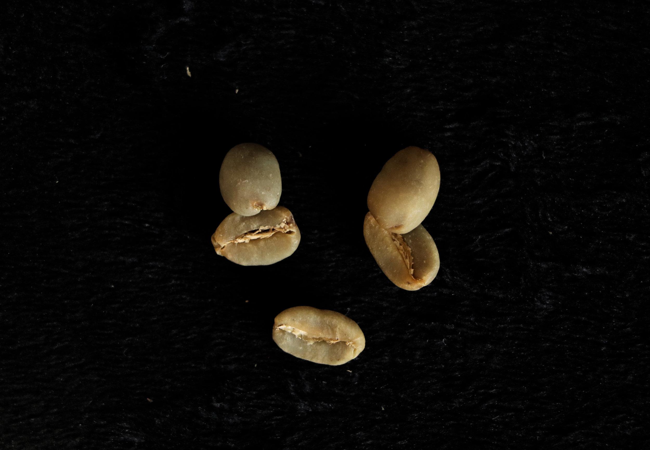 Dead beans