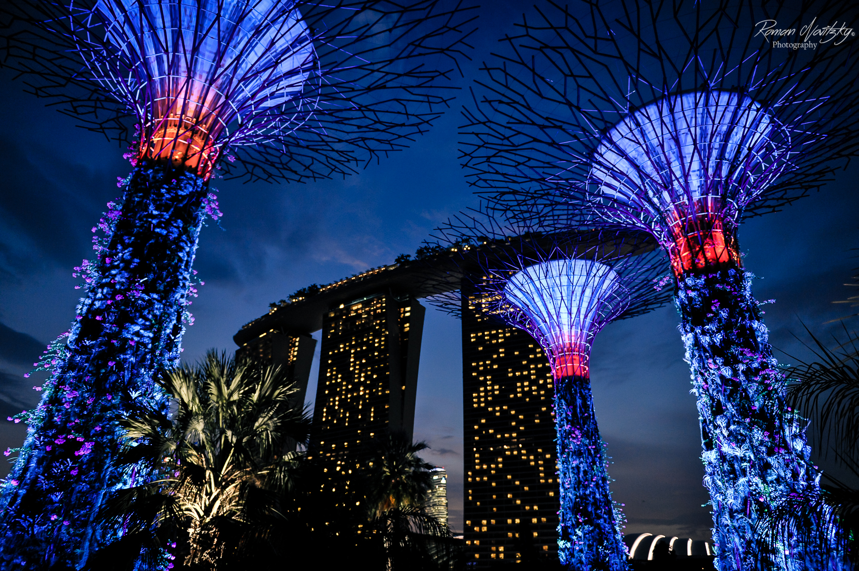 Botanical Gardens - Singapur