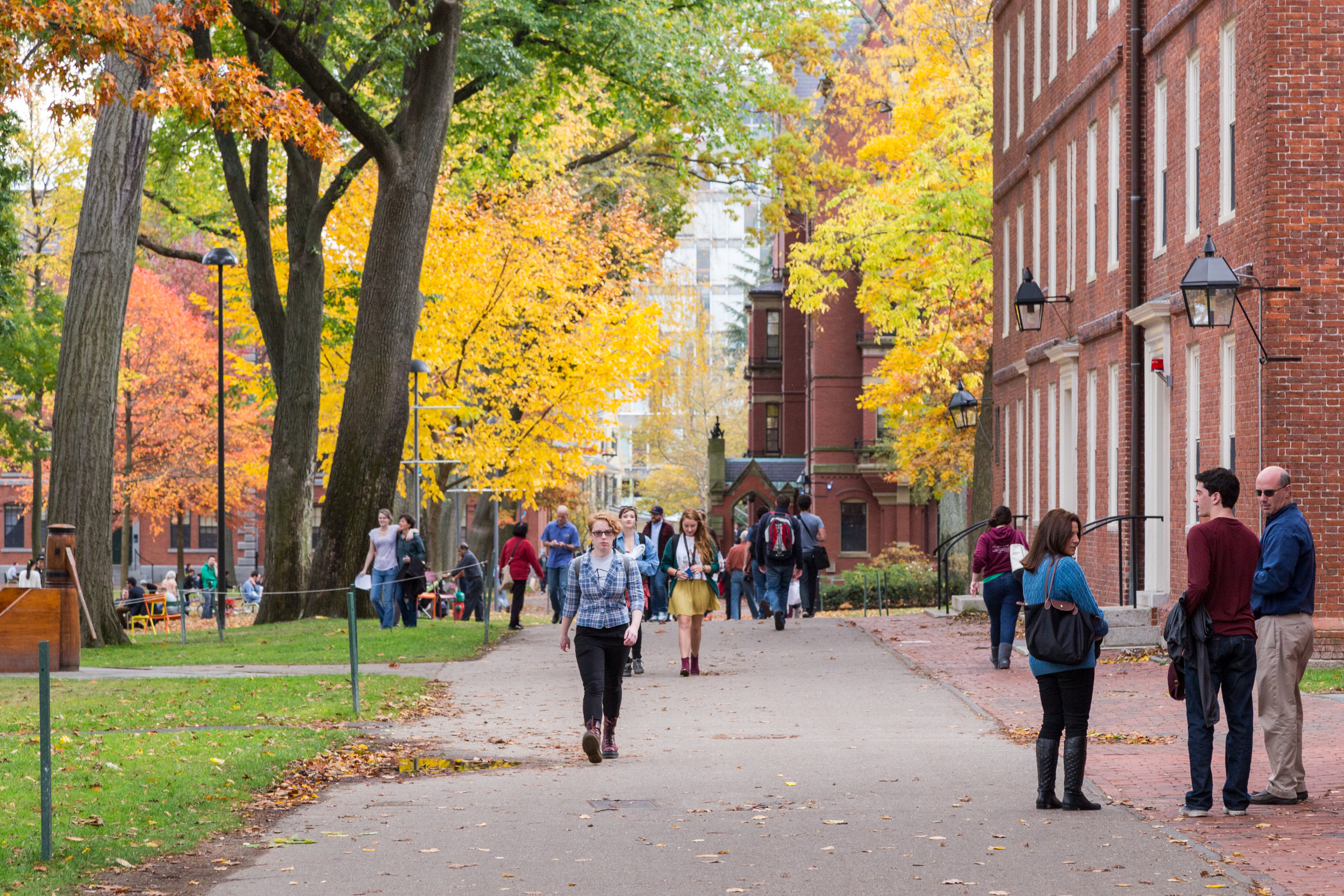 College Advising - Planning which colleges to visit & apply toWriting the personal essayBuilding your resuméCompleting the Common AppPreparing for alumni and on-campus interviewsNavigating deferrals and waitlistsAssessing offers of admission