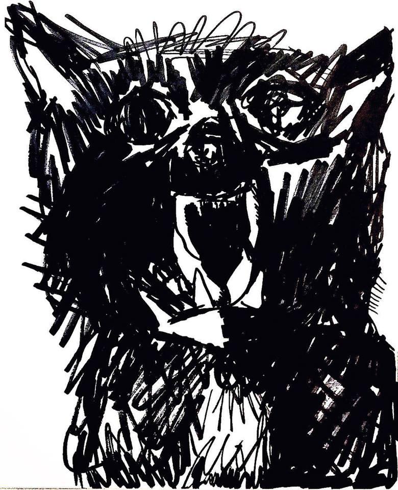 Hissing Cat Sketch