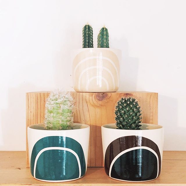 Wednesday cacti. // #roadtripshop #lakearrowhead #cactus #ceramics