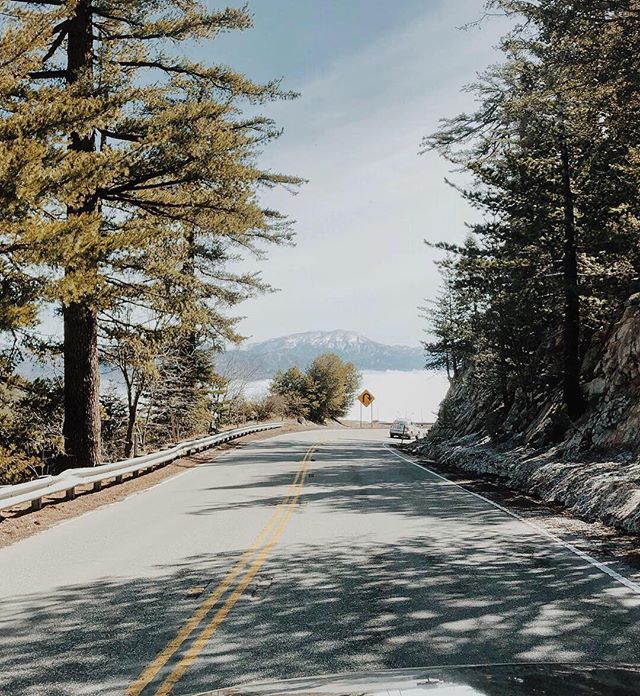 Through the pines. // #lakearrowhead #pinetrees #mountainlife #rimoftheworld