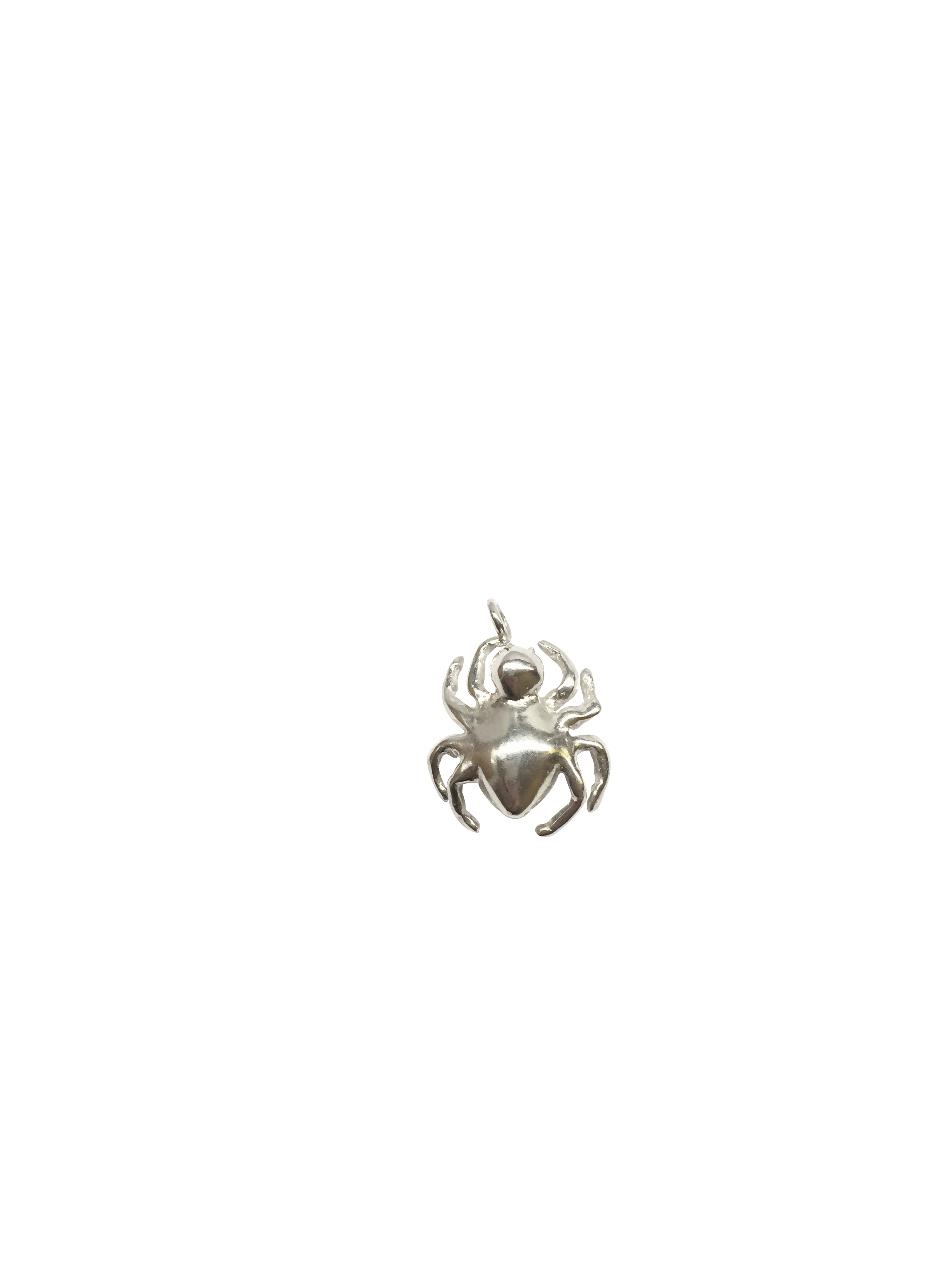 Spider pendant 4 cut-out.jpg