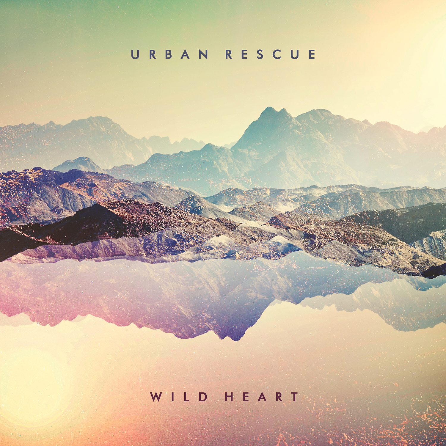 Wild Heart Urban Rescue
