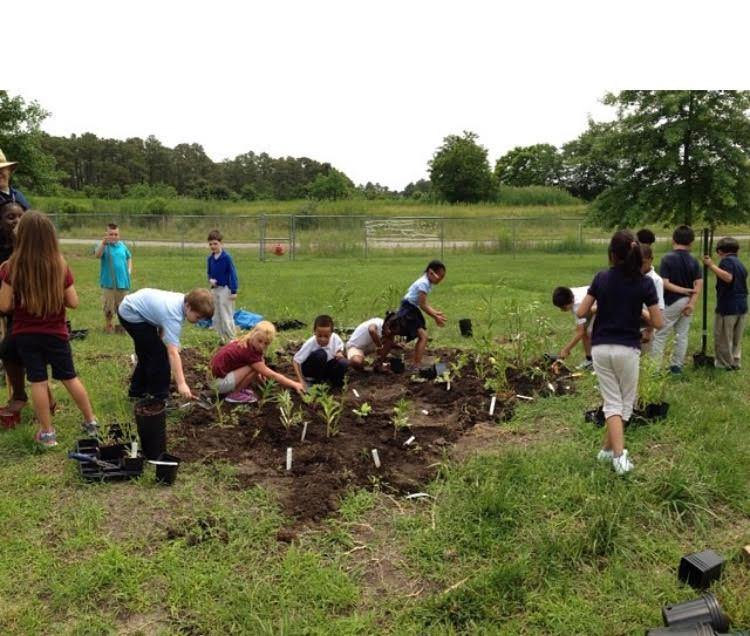 Woodson_Planting.jpg