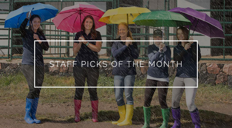 staff-picks-of-the-month.jpg