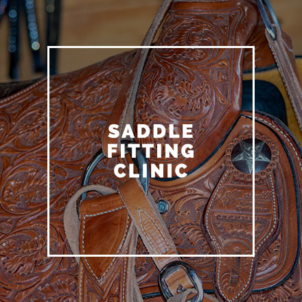 saddle-fitting.jpg