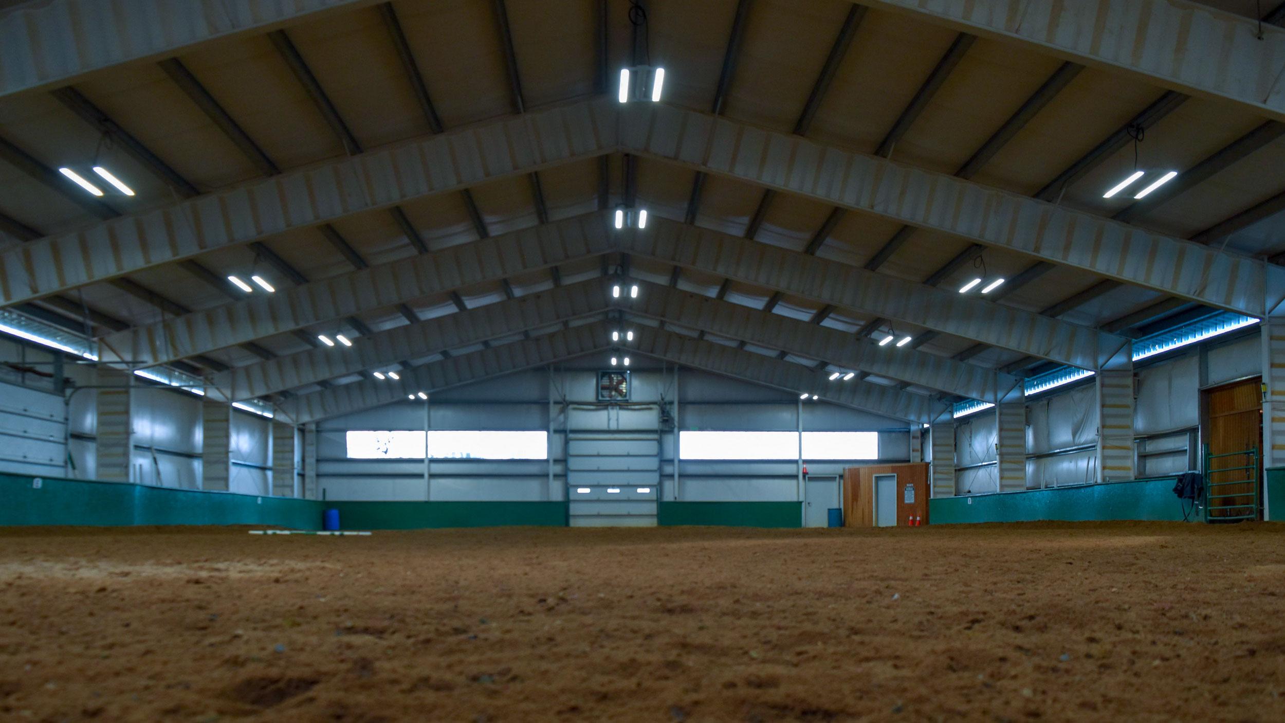 NP-Arena.jpg