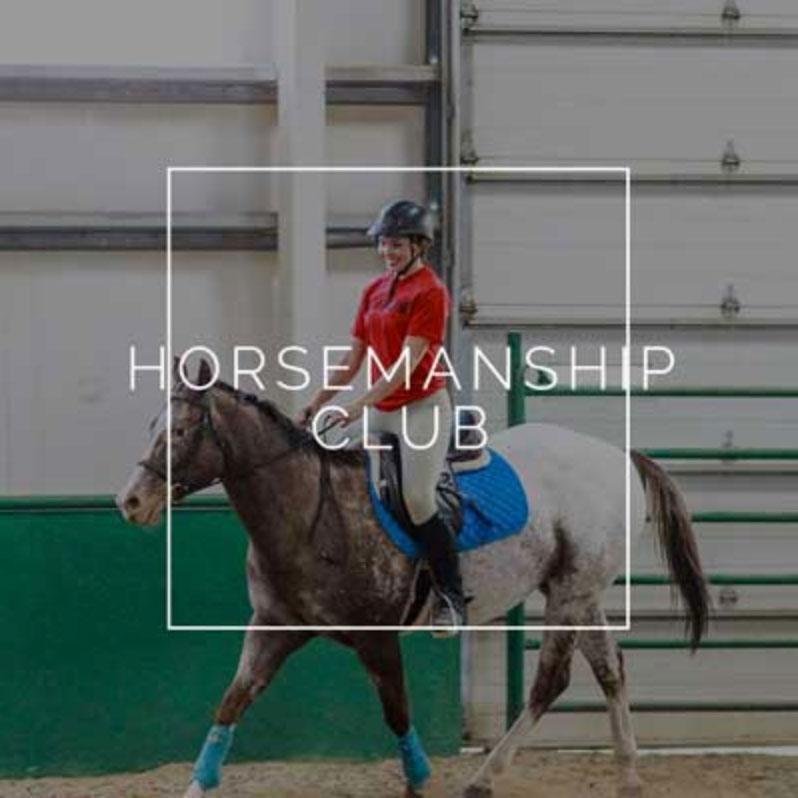 horsemanship.jpg