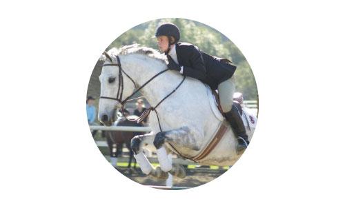 horse training at BMREC